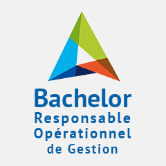 BACHELOR MANAGEMENT en alternance à Reims
